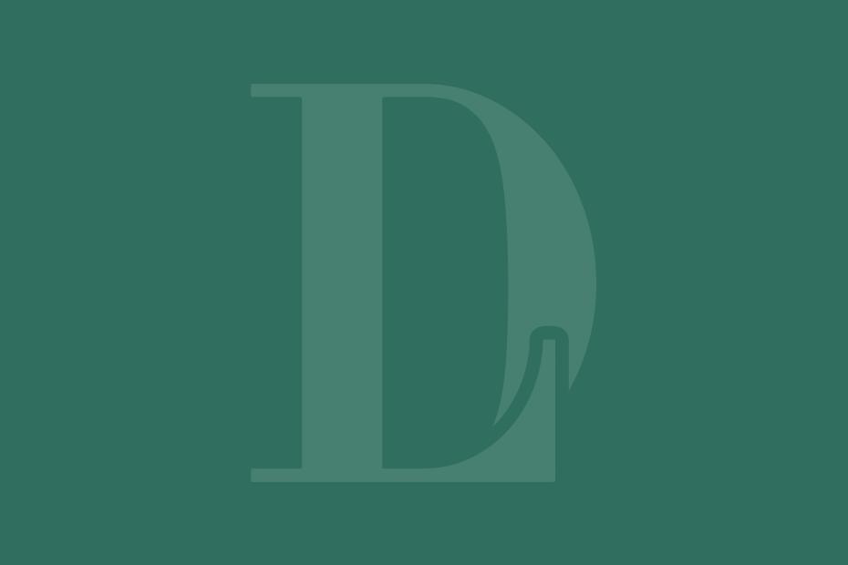 Dr. Liland Logo Icon Green