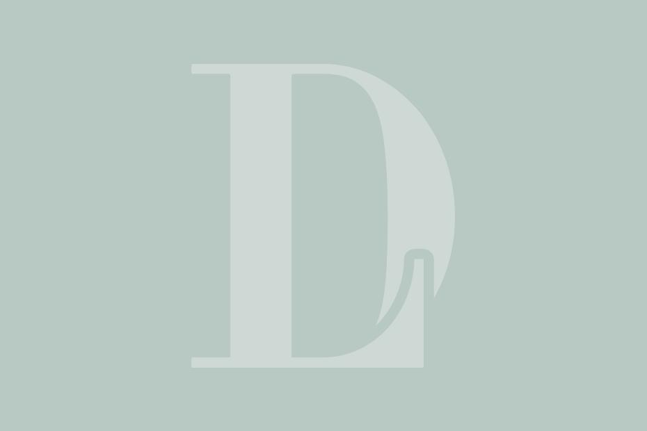 Dr. Liland Logo Icon Grey